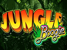 Jungle Boogie в клубе Вулкан